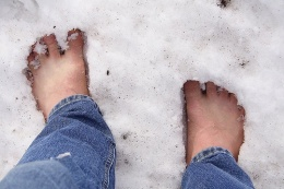 Does SEC chairman Christopher Cox have his bare feet packed in snow and ice?